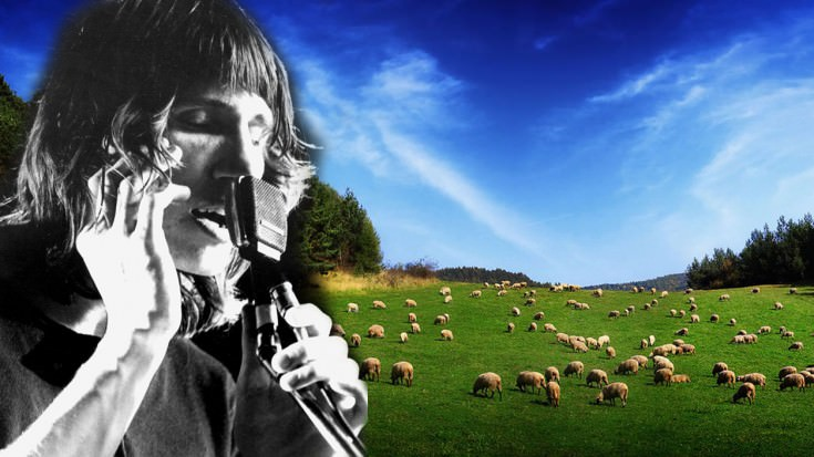 "Only True Fans Will Recognize This Rare, Early Version Of Pink Floyd's ""Sheep"", Do You?"